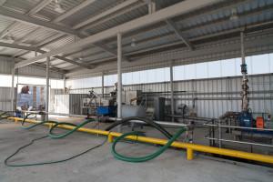 PPR-plant-web-30