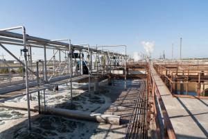 PPR-plant-web-5